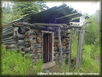 An abandoned trapper cabin at Hootalingua Village on the Yukon River