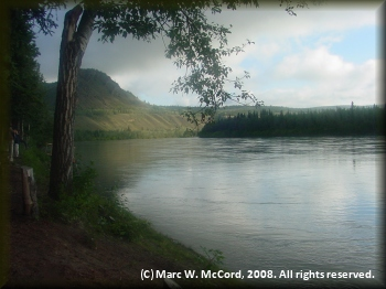 Looking up the Yukon River from Coal Mine Campground