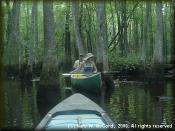 Mara and Larry taking a minute to enjoy the natural beauty of the Black Swamp