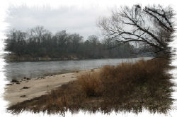The banks of the Sabine River in winter